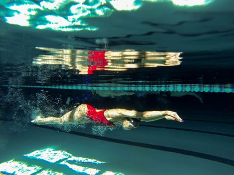 Swimmers compete in state meet