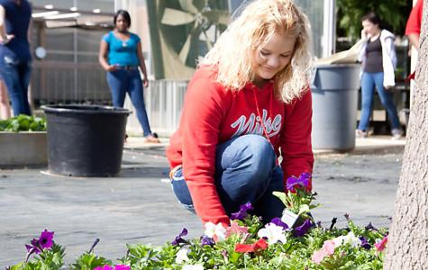 Outside the horticulture building, freshman Brianna Terry helps prepare flowers for their spring sale Saturday from 9 a.m. to 1 p.m.