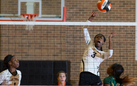 Freshman Unique McBride spikes against the Lobos in the variety match Sept. 22, 2015.