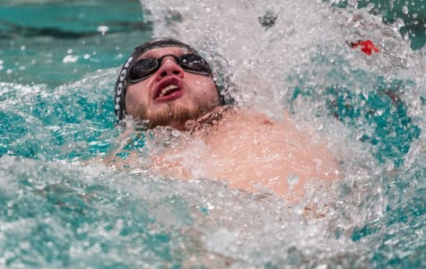 Tigersharks dominate the pool at TISCA