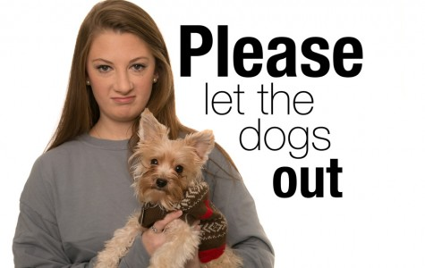 Please let the dogs out