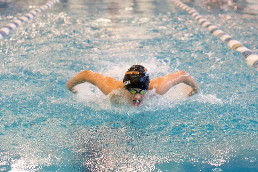 Freshman Dylan Rosser swims butterfly during the Frisco TISCA meet. Both the Tigersharks and the Lady Tigersharks won fourth place.