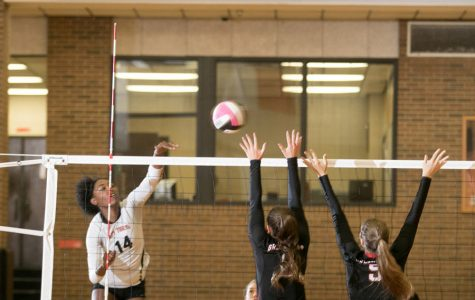 Lady Tigers head to playoffs after defeating Lady Lions 3-1