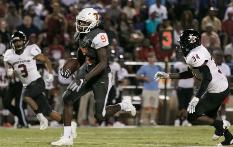 Tigers wins battle of the big cats