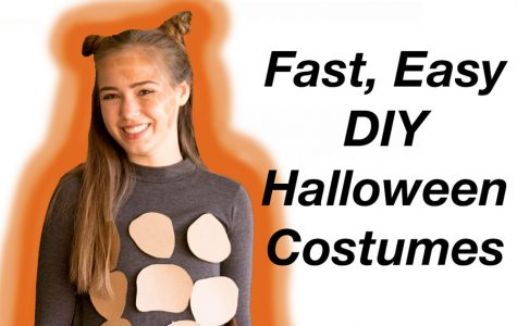 Do it yourself Halloween costumes
