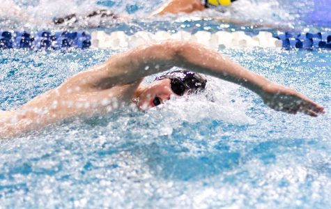 Junior Jackson Shellogg swims in an individual freestyle event at the 2018 State Swim Meet. Shellogg was the only Tigershark to advance to the finals in an individual event.