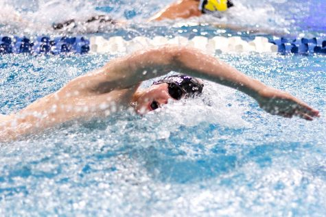 Tigersharks advance four teams in State Swim Meet