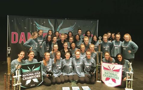 HighSteppers sweep national competitions