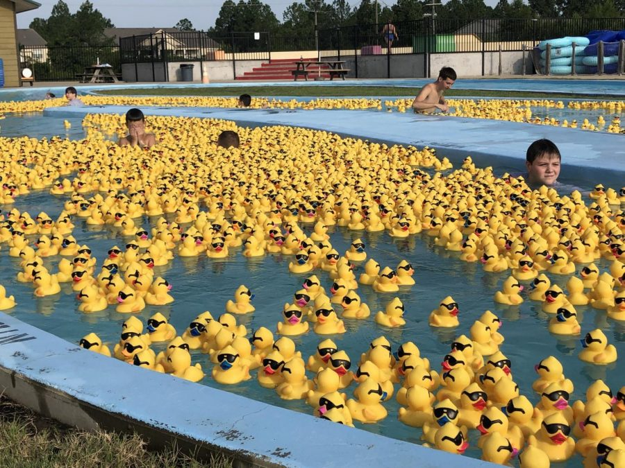 The+Annual+Duck+race+was+held+on+August+18+at+Holiday+Springs+Waterpark.+The+race+raised+over+%2450%2C000+for+the+Christus+St.+Michael%E2%80%99s+hospital.