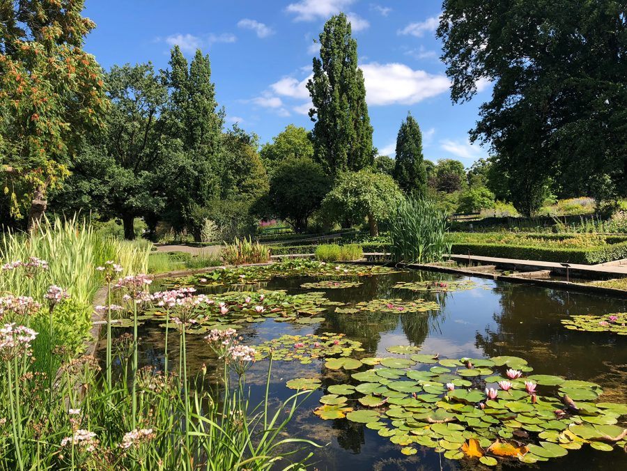During the first day of being in Poznan, students walked around the Botanical Gardens.