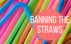 Ban on straws will be positive step in creating clean environment