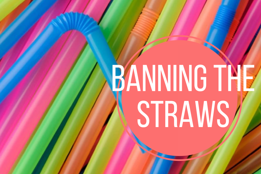 Ban+on+straws+will+be+positive+step+in+creating+clean+environment