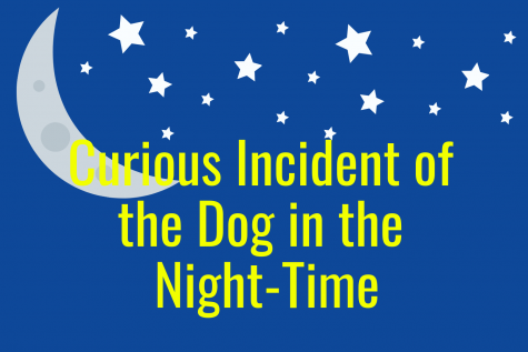 A curious incident