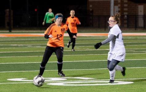 Lions succumb to Lady Tigers