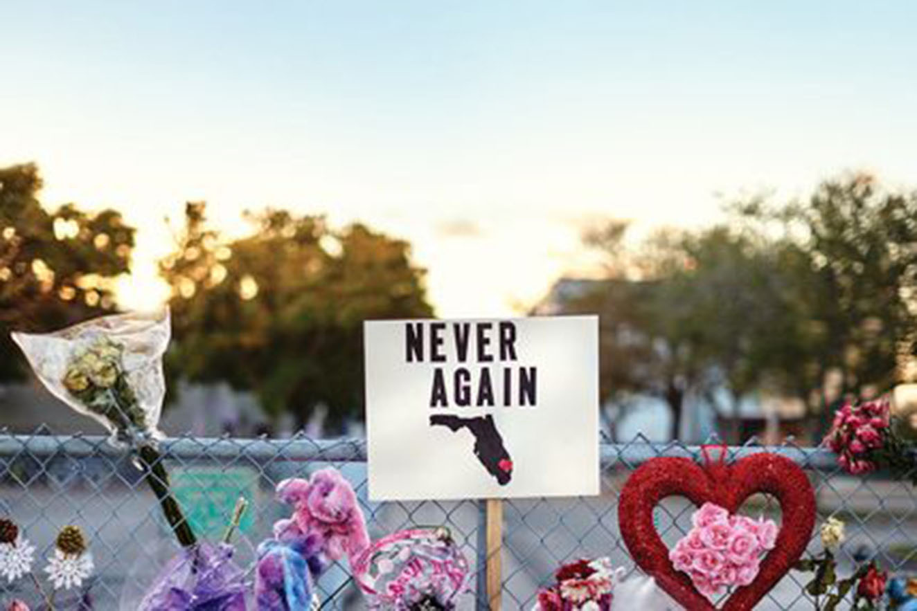 One year ago a fatal school shooting took place in Parkland, Florida and shocked the nation. The anniversary of this event reminds the country that gun control is still a topic that should be closely examined.