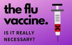 What's in a flu vaccine?