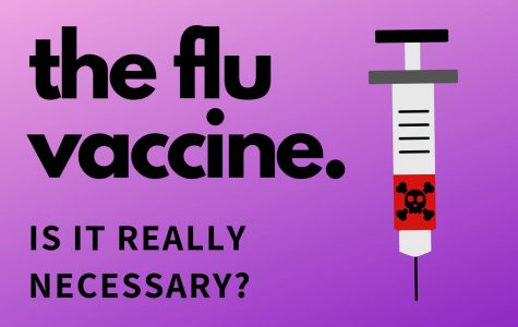 What's in a flu vaccine?