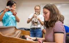 Instrumental skills