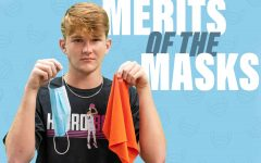 Merits of the mask